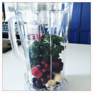 optimum  blender